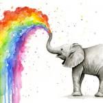 elephantrainbow